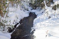Piękny zima w Luesia Hiszpania obrazy royalty free