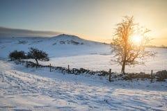 Piękny zima wschodu słońca krajobraz nad śniegiem zakrywał Szczytowego Distri fotografia stock