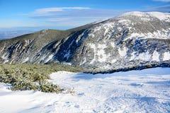 Piękny zimy góry krajobraz od Bułgaria Borovets Zdjęcie Stock