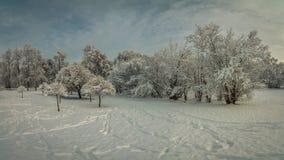 Piękny zimy landscape miasto park zakrywający z śniegiem w chmurnej pogodzie Fotografia Royalty Free