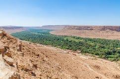 Piękny Ziz doliny krajobraz z drzewko palmowe oazą w Maroko, afryka pólnocna Fotografia Stock