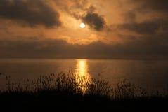 Piękny zmierzch na oceanie z trawą i ucho w przedpolu Zdjęcie Royalty Free