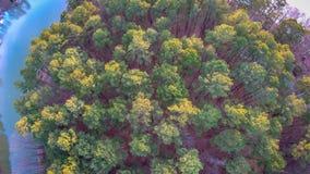 Piękny zmierzch nad jeziornymi wylie południe Carolina Zdjęcia Royalty Free