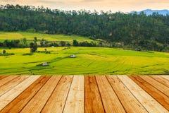 Piękny zmierzch przy tarasowatym ryżu polem Zdjęcia Royalty Free