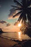 Piękny zmierzch przy tropikalną plażą z palmą Fotografia Royalty Free