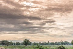 Piękny zmierzch z niebieskim niebem nad ryżowym polem w Tajlandia Obrazy Stock