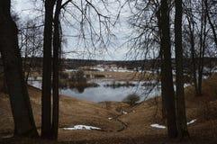 Piękny zmroku krajobraz z małym stawem fotografia stock