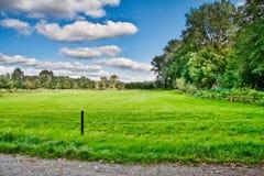 pięknych kolorów świeży krajobraz Zdjęcia Royalty Free