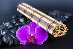 pięknych kropelek storczykowa purpurowa skał woda Obraz Stock