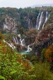pięknych prądów świeży zielony plitvice otaczał roślinności siklawy Obraz Royalty Free
