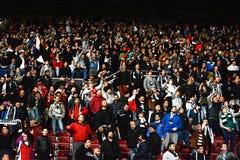 Piłek nożnych fan w stadium Zdjęcia Royalty Free