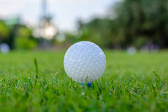 piłkę ścinku golfa ścieżki tee odosobnione obrazu Obraz Royalty Free