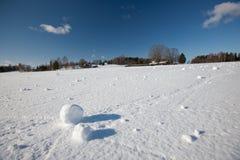 piłka śnieg Obrazy Stock