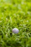 Piłka golfowa Zdjęcia Royalty Free