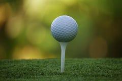 Piłka golfowa na trójniku w pięknym polu golfowym przy zmierzchem zdjęcie royalty free