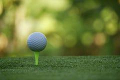 Piłka golfowa na trójniku w pięknym polu golfowym przy zmierzchem obraz royalty free