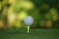 Piłka golfowa na trójniku w pięknym polu golfowym przy zmierzchem fotografia royalty free
