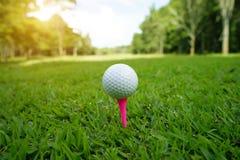 Piłka golfowa na trójniku w pięknym polu golfowym przy zmierzchem zdjęcia stock
