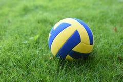 Piłka na zielonej trawie obraz royalty free