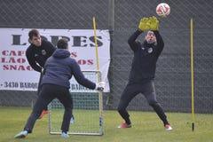 Piłka nożna bramkarza sesja szkoleniowa Fotografia Royalty Free