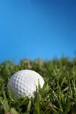piłka w golfa Obraz Stock
