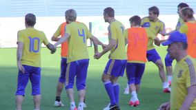 Piłki nożnej drużyny szkolenie Gracza futbolu pociąg na smole zdjęcie wideo