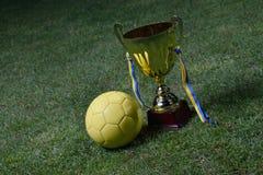 Piłki nożnej filiżanka zdjęcia stock