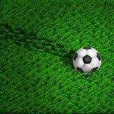 Piłki nożnej piłki kołysanie się na trawie ilustracji