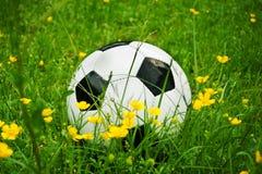 Piłki nożnej piłka, futbol jest w trawie z kwiatami w wiośnie Fotografia Royalty Free
