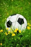 Piłki nożnej piłka, futbol jest w trawie z kwiatami w wiośnie Obraz Stock