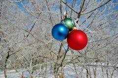 piłki rozgałęziają się drzewa trzy zdjęcia stock