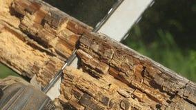 Piłujący drewnianą deskę z piłą łańcuchową ogrodniczki ` s ręki trzymają piły i saw łupka dla domowego use, boczny widok zbiory