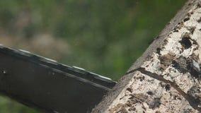 Piłujący drewnianą deskę z piłą łańcuchową ogrodniczki ` s wręcza trzymać saw i piłować drewno dla domowego use, boczny widok zbiory wideo