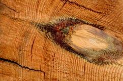 Piłujący drewno z pęknięciami Obrazy Royalty Free