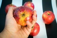 Ριγωτό γραπτό υπόβαθρο Εκμετάλλευση χεριών και μήλο και κόκκινα μήλα στο ριγωτό γραπτό υπόβαθρο, ως α στοκ φωτογραφία
