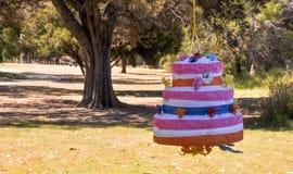Piñata: Party Fun Stock Image