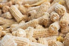 Épi de maïs au sol de repas d'épi Images libres de droits