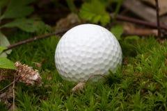 piłka golf zagubiony Zdjęcia Royalty Free