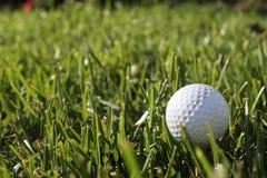 Piłka golfowa Zdjęcie Royalty Free