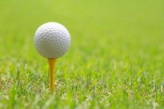 Piłka golfowa na drewnianym golfowym trójniku Obraz Stock