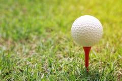 Piłka golfowa na drewnianym golfowym trójniku Zdjęcie Royalty Free