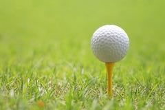 Piłka golfowa na drewnianym golfowym trójniku Obrazy Stock