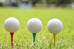 Piłka golfowa na drewnianym golfowym trójniku Obraz Royalty Free