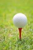 Piłka golfowa na drewnianym golfowym trójniku Zdjęcia Royalty Free