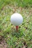 Piłka golfowa na drewnianym golfowym trójniku Fotografia Stock