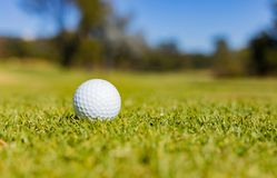 Piłka Golfowa na farwater zieleni przy polem golfowym Zdjęcia Stock