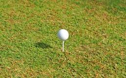 Piłka golfowa na trójniku Zdjęcia Royalty Free