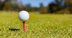 Piłka Golfowa na trójniku przy polem golfowym Fotografia Royalty Free