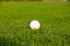Piłka golfowa na zieleni Zdjęcia Royalty Free