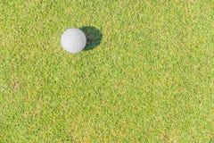 Piłka golfowa przeciw trawie Fotografia Royalty Free